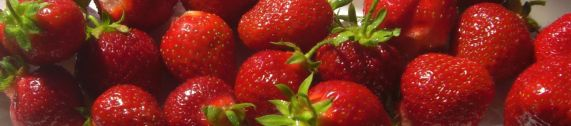strawberries-banner-size