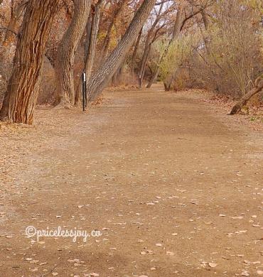 scenic walk